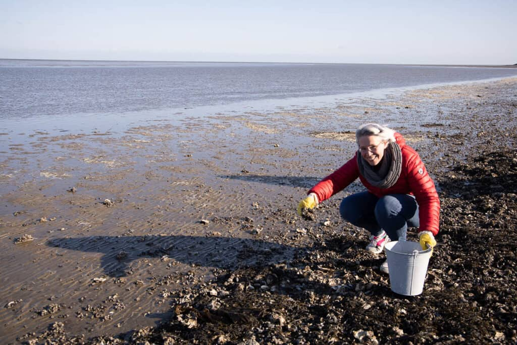Picking oysters