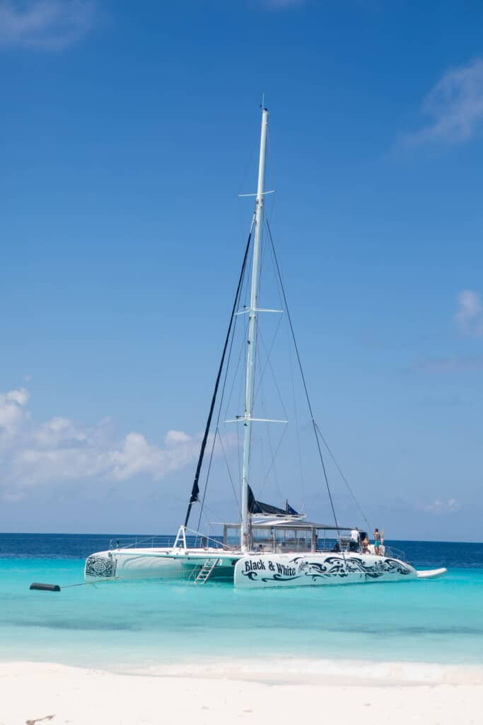 Blue Finn charters